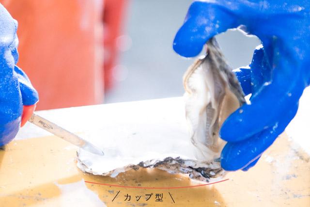 牡蠣の剥き方4