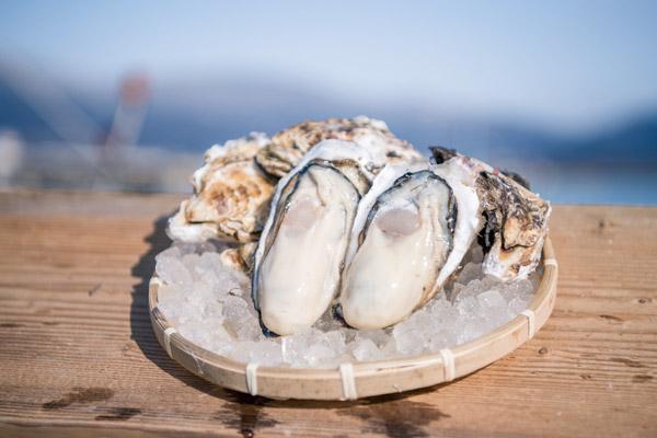 牡蠣の剥き方6