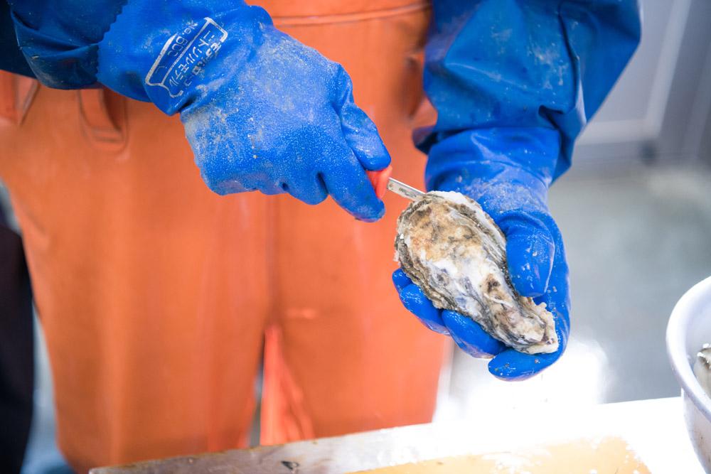 牡蠣の剥き方画像