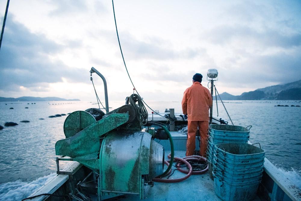 一本松牡蠣の漁の様子